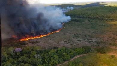 Photo of Chapada: Incêndio florestal no município de Lençóis é controlado, mas ainda requer cuidados