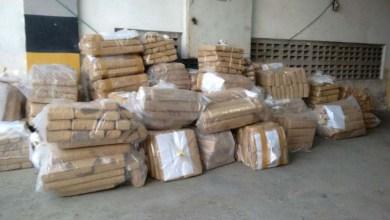 Photo of Polícia Federal incinera cinco toneladas de drogas apreendidas na Bahia