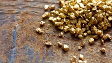 Photo of Chapada: Ciclo da mineração deve ser retomado com descoberta de ouro em Iramaia
