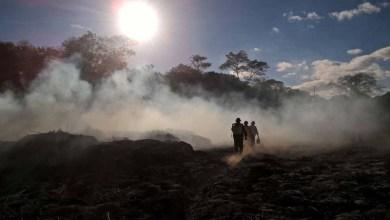Photo of #Chapada: Incêndios florestais na região continuam sem ações especiais de combate e prevenção