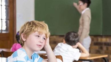 Photo of #Brasil: Aula gratuita pela internet aborda o autismo e a inclusão escolar