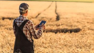 Photo of Estudo aponta que 45% dos donos de microempresas rurais baianos usam smartphones para acessar a web