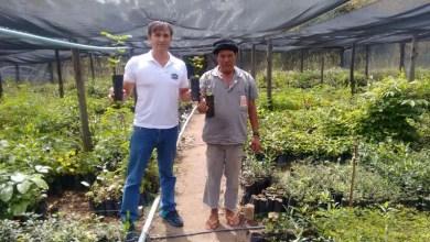 Photo of Chapada: Desafio OGGI Alto do Paraguaçu de MTB promove reflorestamento na região