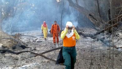 Photo of Chapada: Brigada em Andaraí cria o Grupo de Busca e Resgate com bombeiros e voluntários