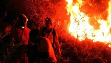Photo of Chapada: Combate a incêndio na região entre o Vale do Pati e Andaraí é intensificado; veja vídeo