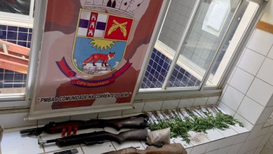 Photo of #Bahia: Em Xique-Xique, polícia erradica três mil pés de maconha e apreende rifle; veja fotos