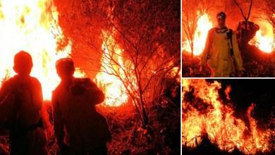 Photo of Chapada: Incêndio florestal entre o Vale Pati e Andaraí é controlado; novo foco surge em Mucugê