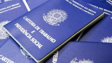 Photo of Sistema de pré-cadastro agiliza emissão de carteiras de trabalho; saiba mais