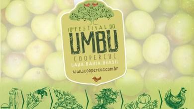 Photo of Festival do Umbu começa nessa sexta com entrega de mudas para agricultura familiar