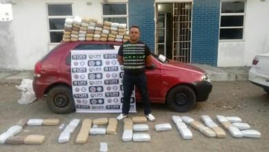 Photo of #Bahia: Polícia apreende drogas avaliadas em R$1 milhão em menos de 24h