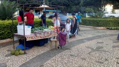 Photo of Chapada: Feira de produtos orgânicos da agricultura familiar em Iraquara começa a ser organizada