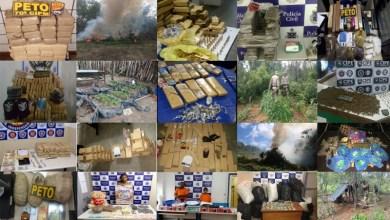 Photo of #Bahia: Polícia apreendeu no ano de 2018 cerca de R$ 9 milhões em drogas