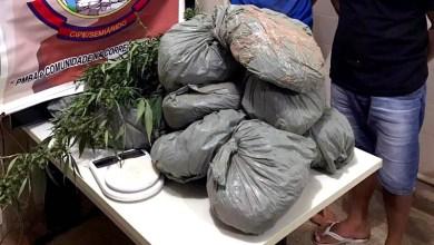 Photo of #Bahia: Polícia encontra 11 quilos de maconha enterrados no município de Irecê
