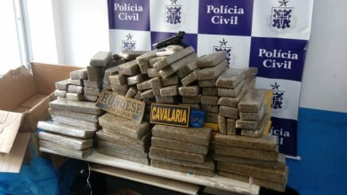 Photo of #Bahia: Pistola israelense e 300 quilos de maconha são apreendidos pela polícia em Feira de Santana