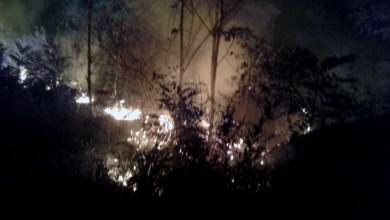 Photo of Chapada: Brigadistas voluntários extinguem foco de incêndio florestal em Andaraí