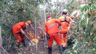 Photo of Chapada: Brigadistas tentam controlar incêndio na Serra da Tromba, entre Abaíra e Piatã, cinco dias após início das chamas