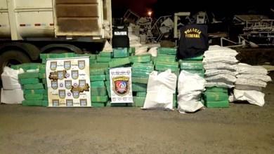 Photo of #Bahia: Polícias apreendem três toneladas de maconha em caminhão com carga de milho