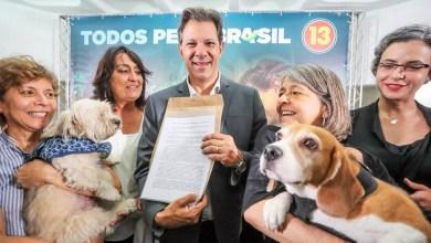 Photo of #Eleições2018: Fernando Haddad se reúne com ativistas pelo direito dos animais