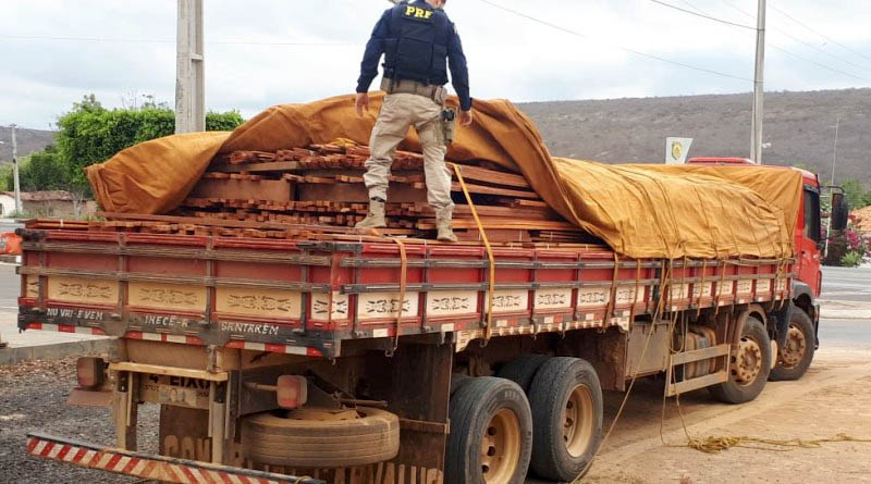 Chapada: Carga de madeira ilegal é apreendida pela PRF em trecho da BR-242 na região de Seabra