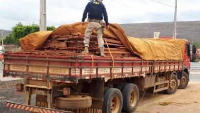 Photo of Chapada: Carga de madeira ilegal é apreendida pela PRF em trecho da BR-242 na região de Seabra