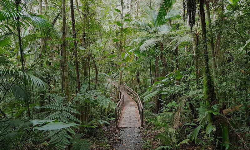 Chapada: Curso de trilhas sustentáveis é realizado em Ibicoara entre 16 e 20 de outubro
