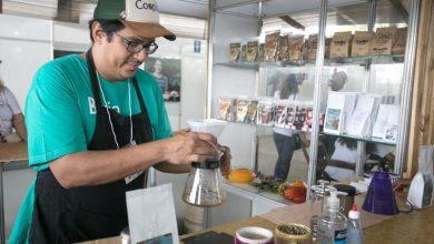 Photo of #Chapada: Café da agricultura familiar da região foi novamente premiado e está entre os cinco melhores do país