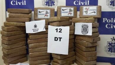 Photo of #Bahia: SSP e PF apreendem cerca de R$ 1 milhão em cocaína na capital baiana