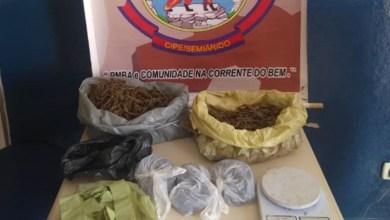 Photo of Chapada: Idoso é encontrado com drogas enterradas em quintal de casa no município de Cafarnaum