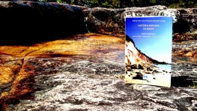 Photo of Chapada: Autores querem arrecadar verba para publicação do livro 'História Natural da Bahia'