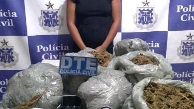 Photo of #Bahia: Polícia apreende 10 quilos de maconha em ponto de tráfico no município de Juazeiro