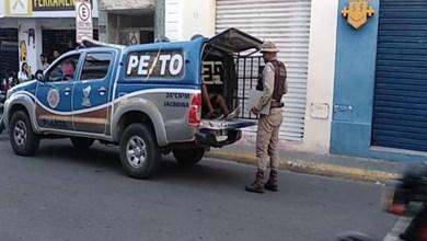 Photo of Chapada: PM detém ladrão que ficou preso em escritório que tentou roubar em Jacobina