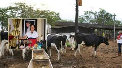 Photo of Chapada: Comissão de gestão municipal de Itaberaba apresenta ExpoParaguaçu a pecuaristas de Alagoas