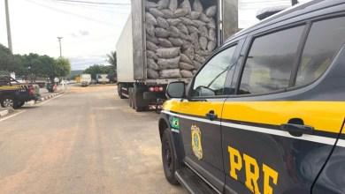 Photo of Chapada: Mais de R$ 40 mil em sacos de carvão vegetal são apreendidos pela PRF em Seabra; veja vídeo