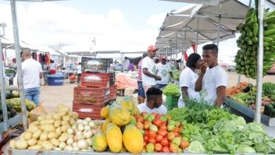 Photo of Inscrição para a 10ª Feira Baiana da Agricultura Familiar termina no dia 30 de setembro