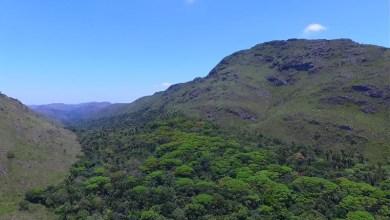 Photo of Chapada: Dez Reservas Ambientais serão criadas nos municípios de Jacobina e Ourolândia