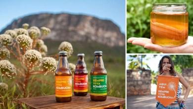 Photo of Refrigerante natural é produzido na Chapada Diamantina; a bebida é saudável, artesanal e cheia de sabor
