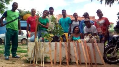 Photo of Chapada: Colégio em Itaetê inicia aulas práticas em primeiro curso de agropecuária do município