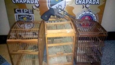 Photo of Chapada: Disque denúncia da Cipe auxilia na apreensão de menor com revólver em Ruy Barbosa