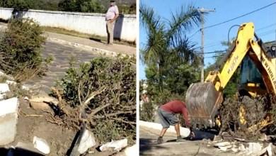 Photo of Chapada: Moradores de Rio de Contas voltam a reclamar de demolição de canteiros e plantas arrancadas