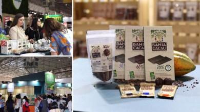 Photo of Cooperativa da agricultura familiar lança chocolate sem lactose durante feira de produtos sustentáveis em São Paulo