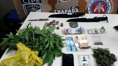 Photo of Chapada: Plantação de maconha é descoberta no Vale do Capão; responsável é preso e erva erradicada