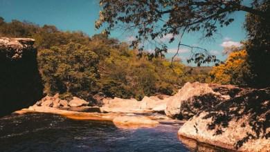 Photo of Parque Nacional da Chapada Diamantina participa de projeto de celebração às Unidades de Conservação