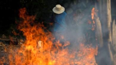 Photo of #Brasil: Bolsonaro autoriza uso das Forças Armadas contra incêndios na região da Amazônia