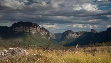 Photo of Parque Nacional da Chapada Diamantina completa 34 anos de fundação; conheça a história da região