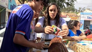 Photo of Chapada: Estudantes de Palmeiras levam trabalhos da sala de aula para feira ao ar livre