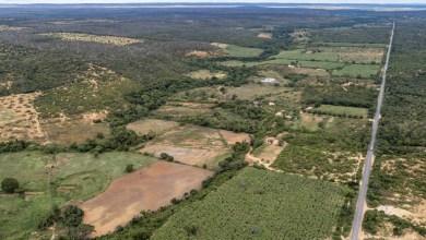 Photo of Para desenvolver ações na região, comitiva do governo estadual visita municípios da Chapada Diamantina