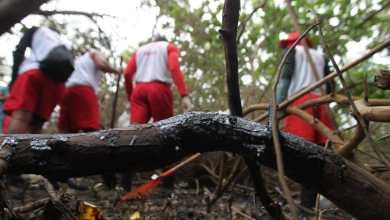 Photo of Corpo de Bombeiros da Bahia já retirou 40 toneladas de óleo no Litoral Norte