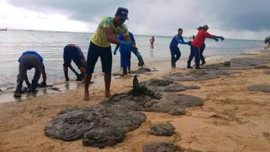 Photo of #Tragédia: Laboratório em Alagoas diz ter identificado vazamento de óleo no sul da Bahia