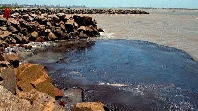 Photo of #Brasil: Petrobras já retirou mais de 200 toneladas de resíduo oleoso das praias nordestinas