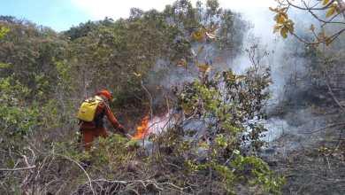 Photo of Maior parte dos municípios atingidos por incêndios florestais fica na Chapada Diamantina e no oeste da Bahia